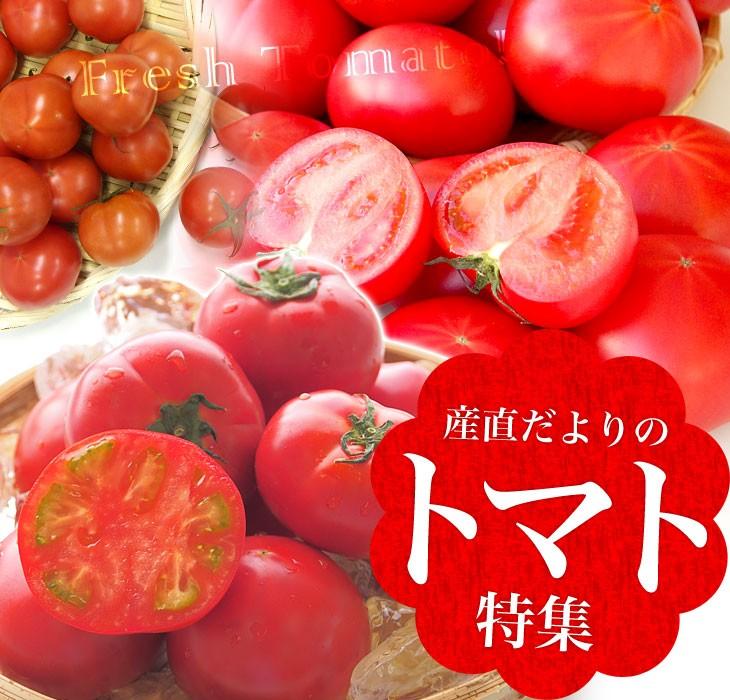 トマトカテゴリートップ