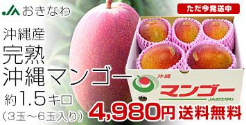 沖縄マンゴー1.5キロ