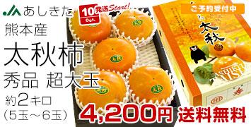 太秋柿 2キロ