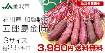五郎島金時 2.5キロ