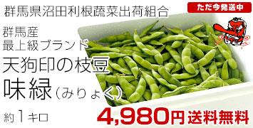 天狗枝豆「味緑」1キロ