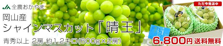 岡山シャイン