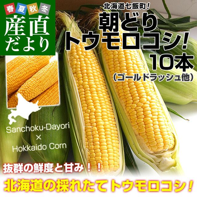 池田さんトウモロコシ