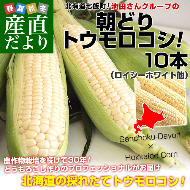 池田さんホワイト
