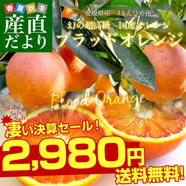 ブラッドオレンジ特売