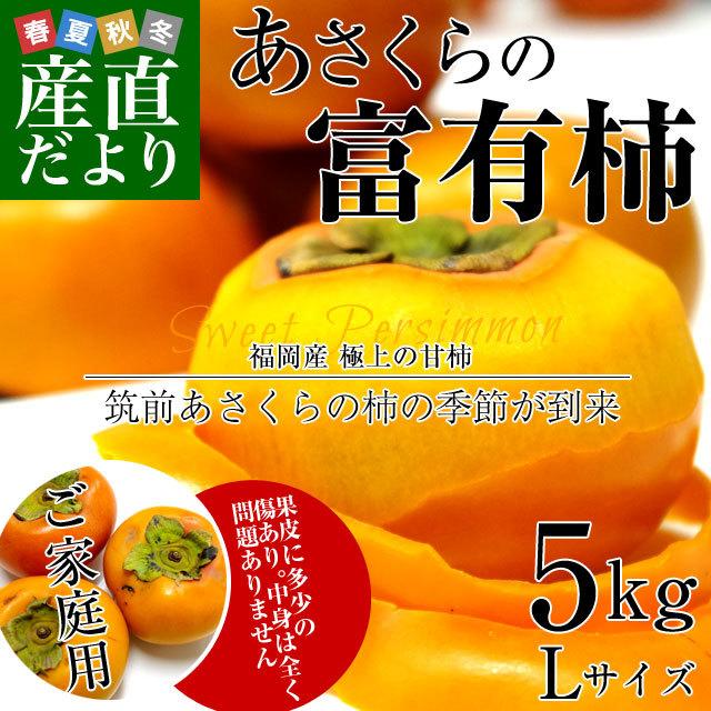 あさくらの富有柿 5キロ
