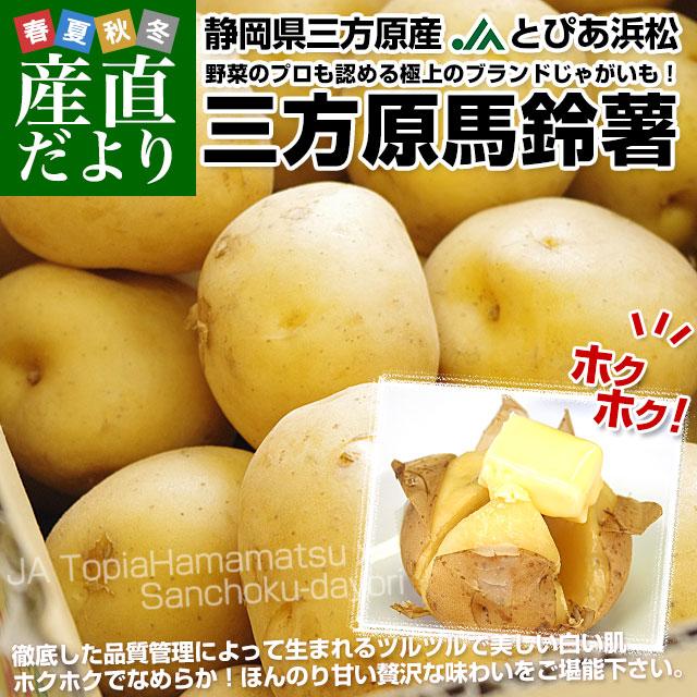 三方原馬鈴薯